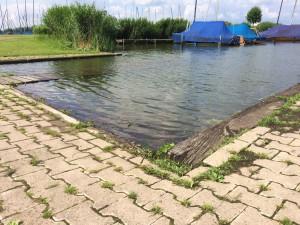 Hochwasser Bild vom Sonntag